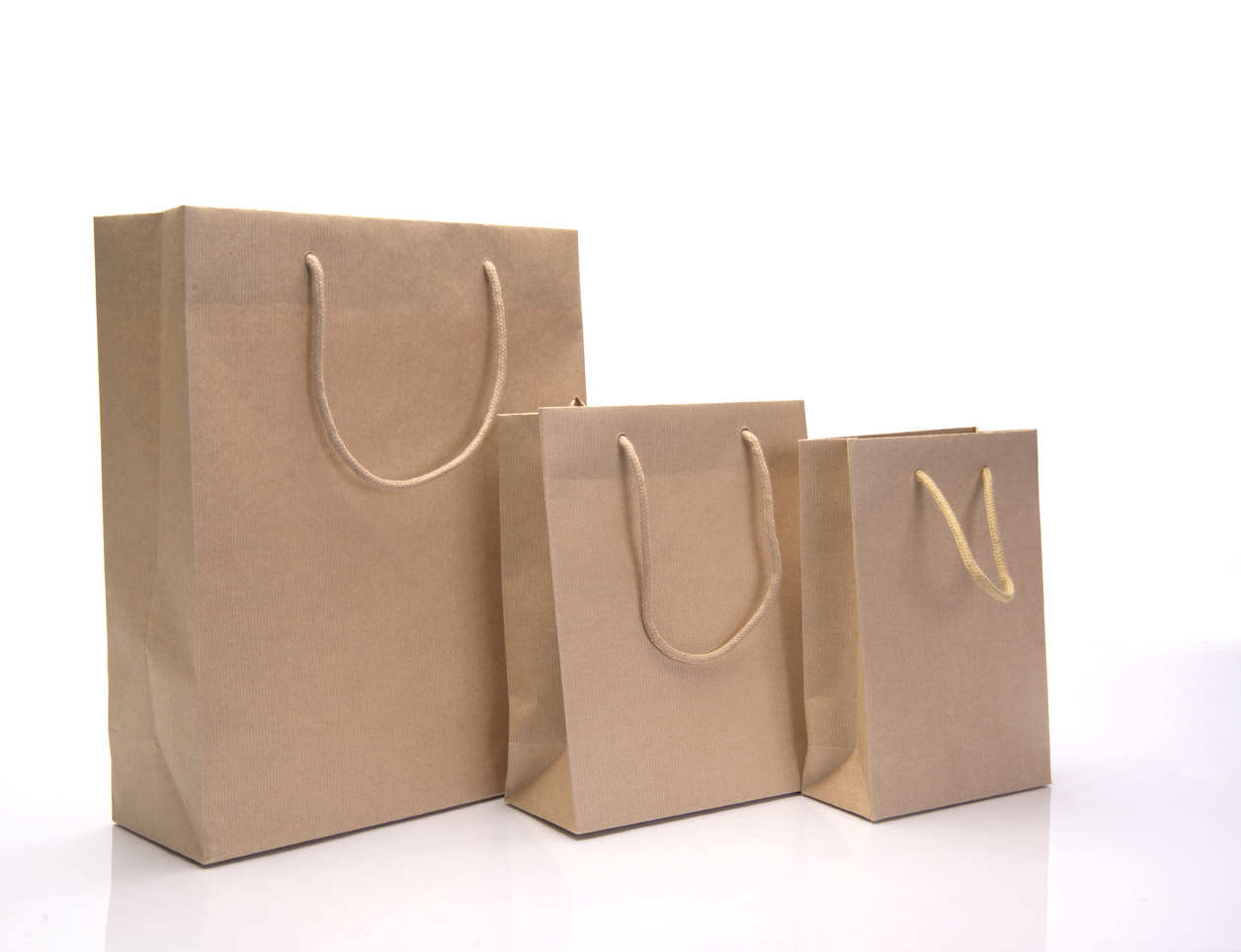 Rope Handle Paper Carrier Bags